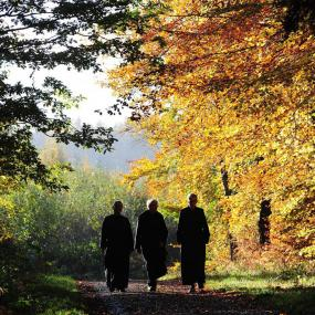 Monks in Autumnal Valley