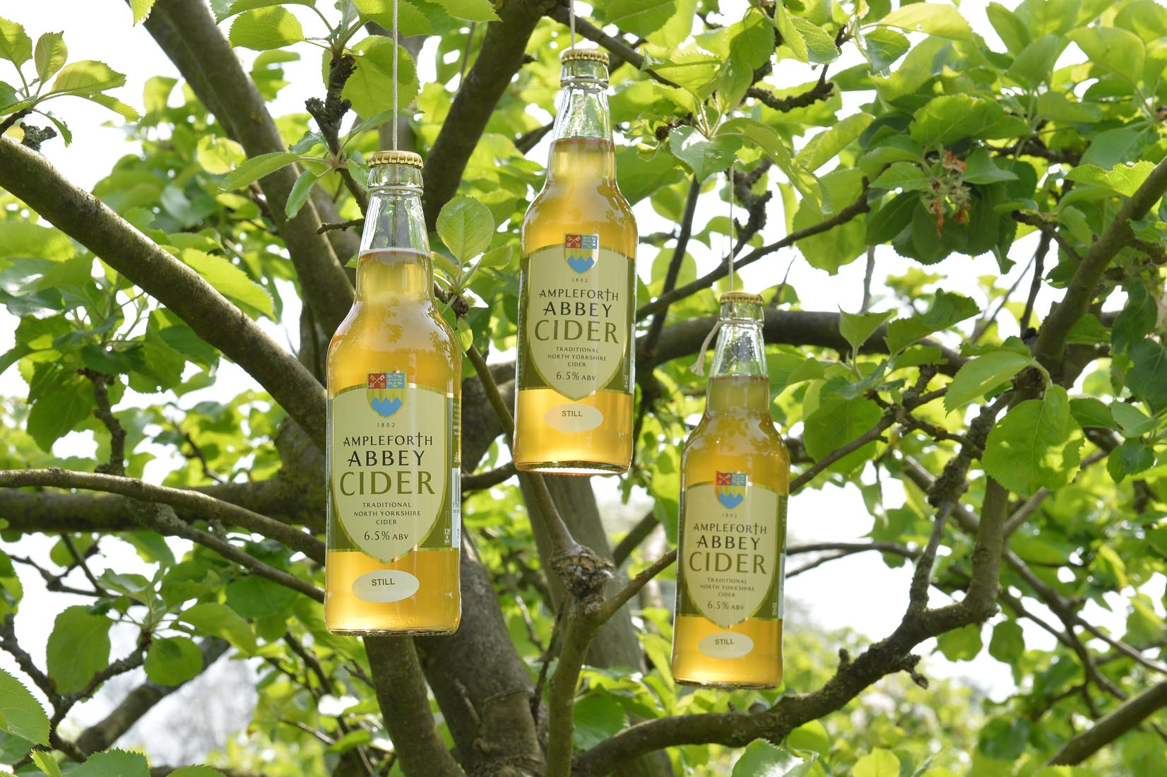 Ampleforth Cider